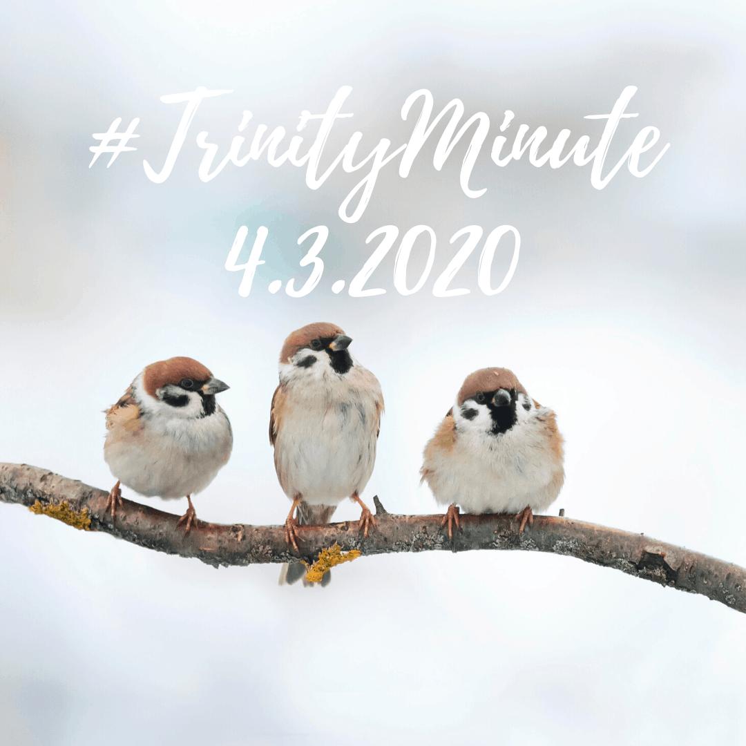 #TrinityMinute 4.3.2020